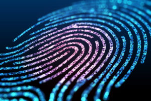 What To Do Next With Biometric Information in Illinois?