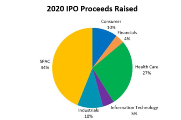 2020 IPO Proceeds Raised