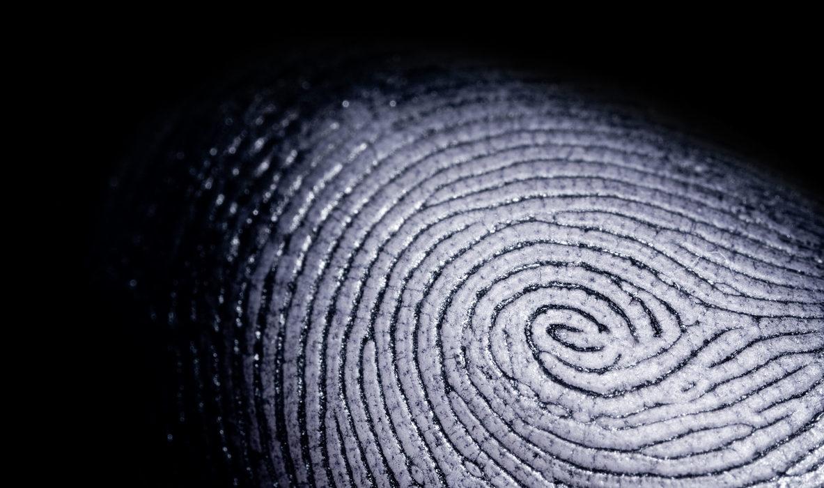 Historic Biometric Privacy Suit Settles for $650 Million